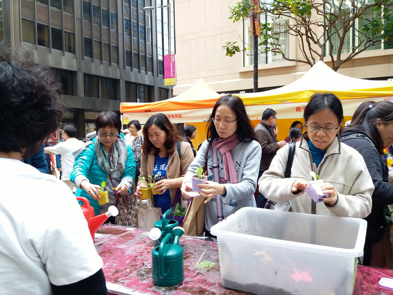 City Organic Day 2017