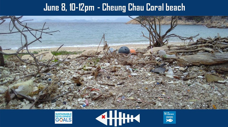 Oceans' Day Cleanup