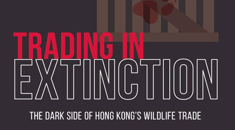 HK: the center of wildlife trafficking